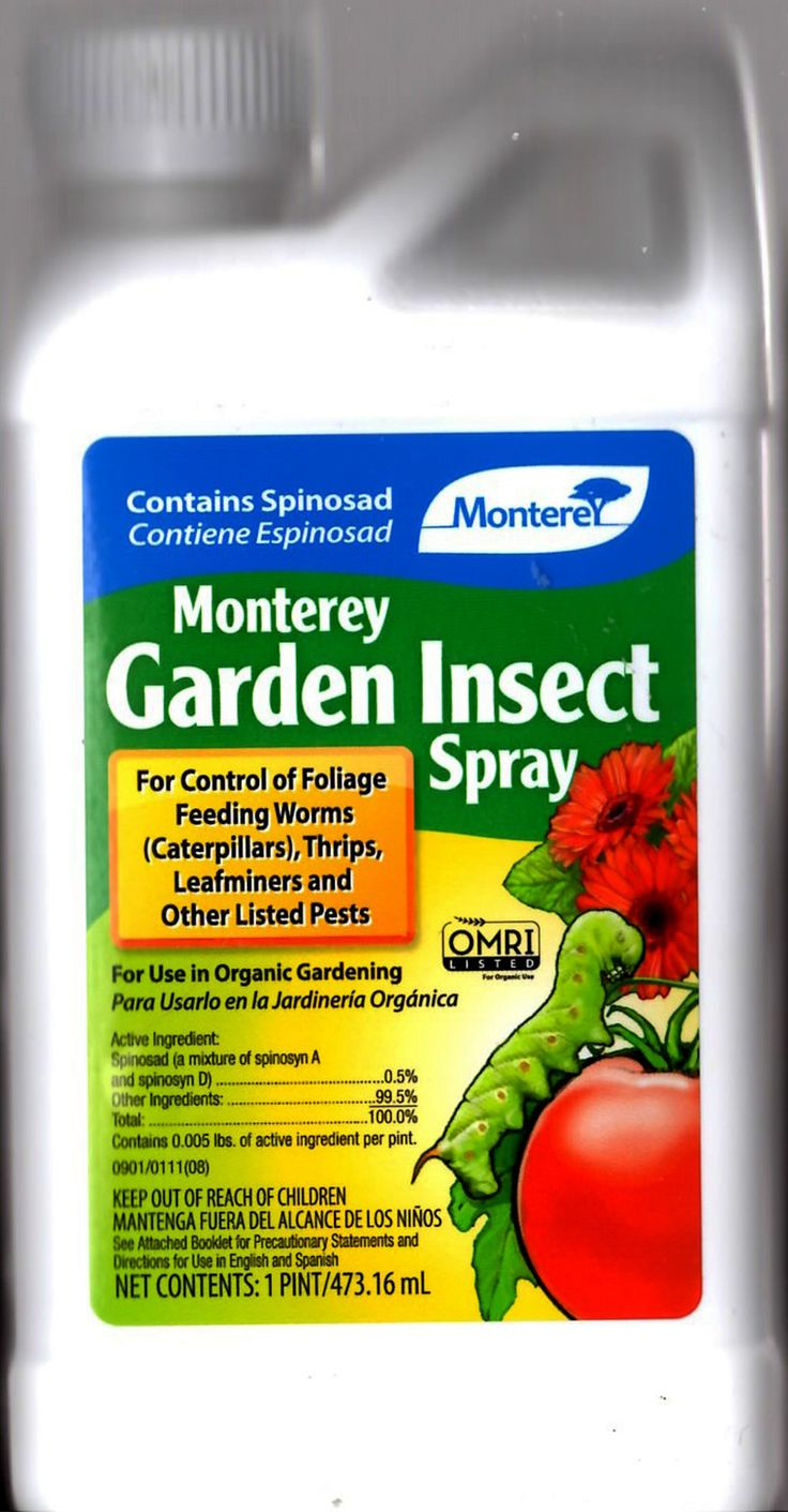 17 Best Images About New For 2016 On Pinterest Gardens Garden Insects And Blood Pressure