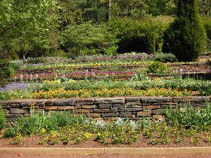 17 meilleures images propos de jardin sur pinterest jardins plates bandes sur lev es et. Black Bedroom Furniture Sets. Home Design Ideas