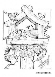Kleurplaat vogels voeren, voederhuisje, kleuteridee , feeding birds preschool coloring