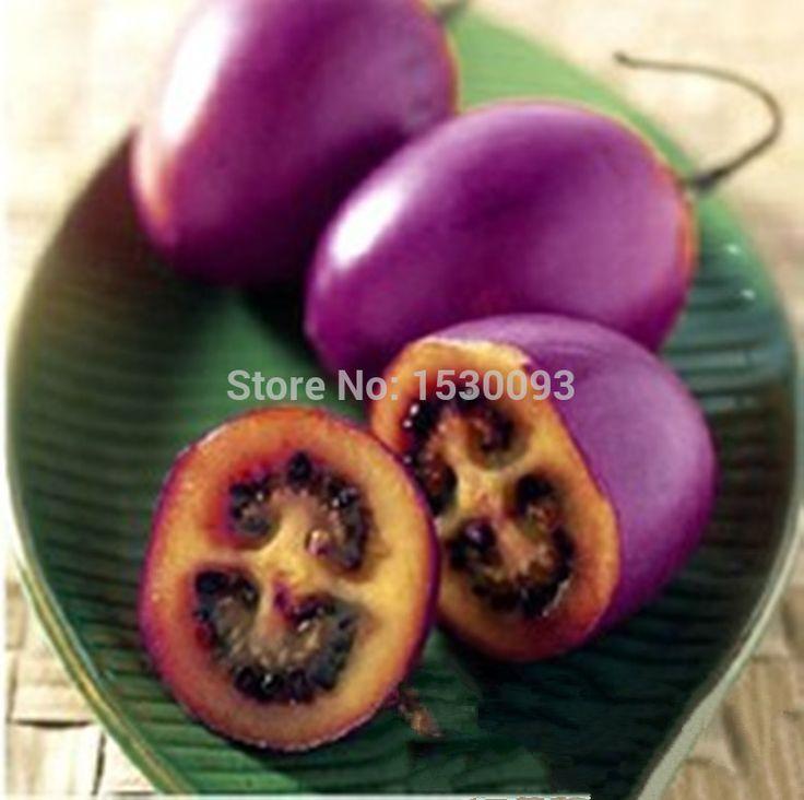 rapunzel tomato how to grow