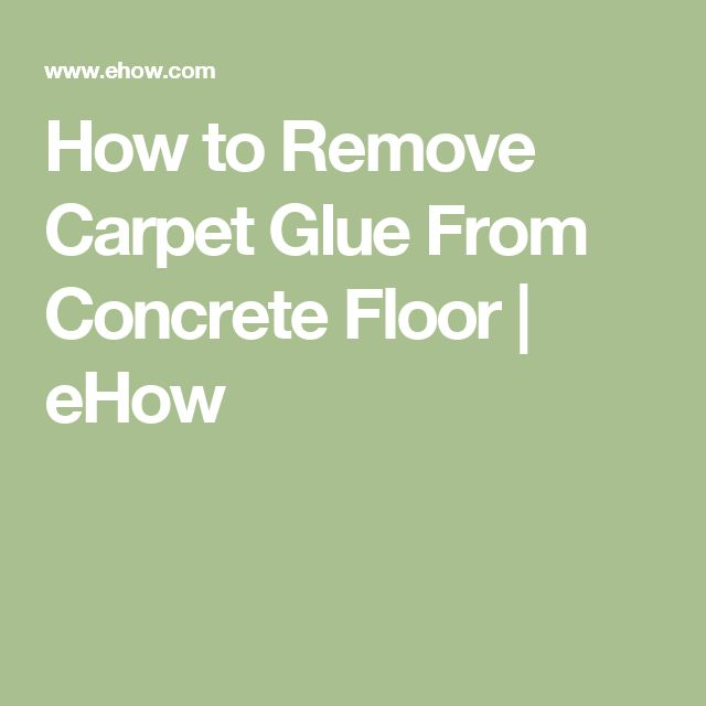 the 25+ best carpet glue ideas on pinterest | cat things, cat