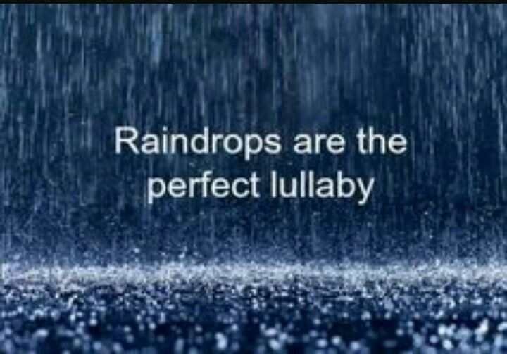 Raindrops are the perfect lullaby.