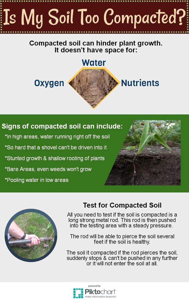 Compacted soil. Great for ponds, bad for plants.  www.polymerinnovations.com.au  #Earth #Garden  #Seedlings #Flower #Green #thumb #Water