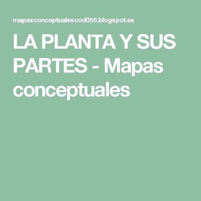 LA PLANTA Y SUS PARTES - Mapas conceptuales