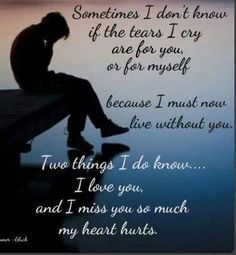 Sometimes I don't know if the tears I cry are for you or for myself...because I must now live without you. Two things I do know...I love you, and I miss you so much my heart hurts.