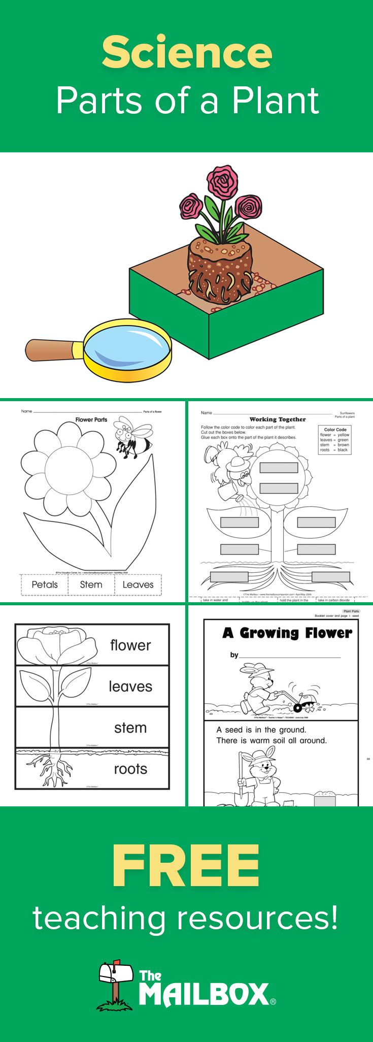 4255 best Education images on Pinterest | English, Preschool and Songs