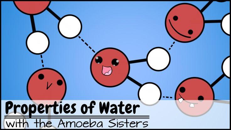 47 Best Biochemistry Images On Pinterest