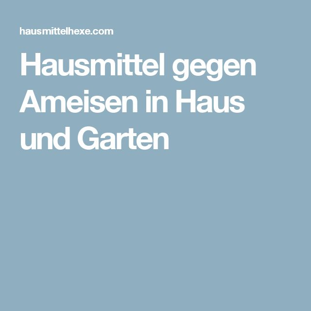 1000 ideas about ameisen hausmittel on pinterest. Black Bedroom Furniture Sets. Home Design Ideas