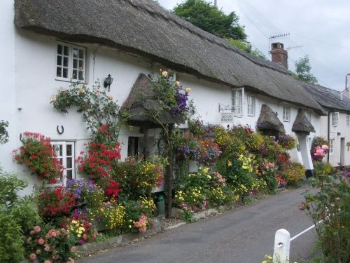 Branscombe, Devon - makes me smile when I drive past and see the lovely house and flowers