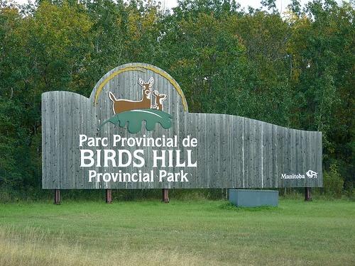 Birds Hill Provincial Park, Manitoba