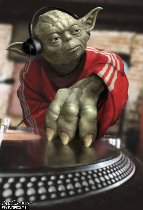 fun 12 funny yoda pictures you shall see