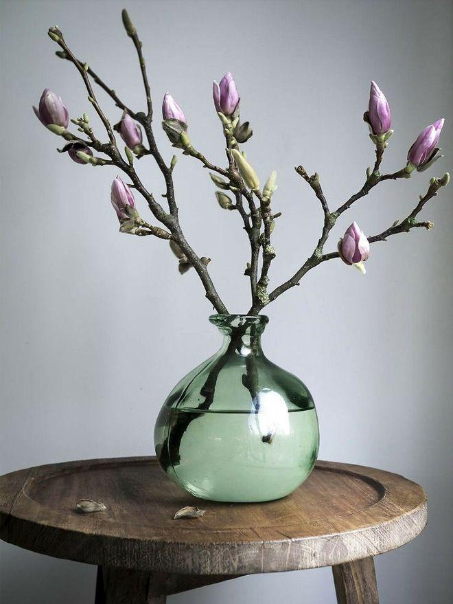 tulpeboomtakken in bolvaas