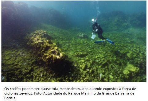 Mudança climática é a principal ameaça à Grande Barreira de Corais