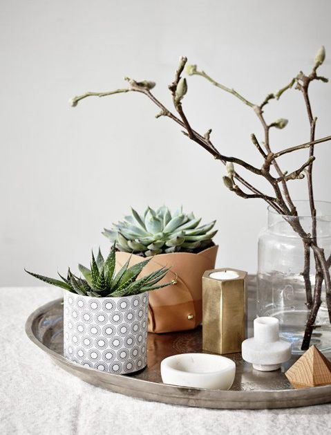 Coffee table tray styling with succulents | Interiors |