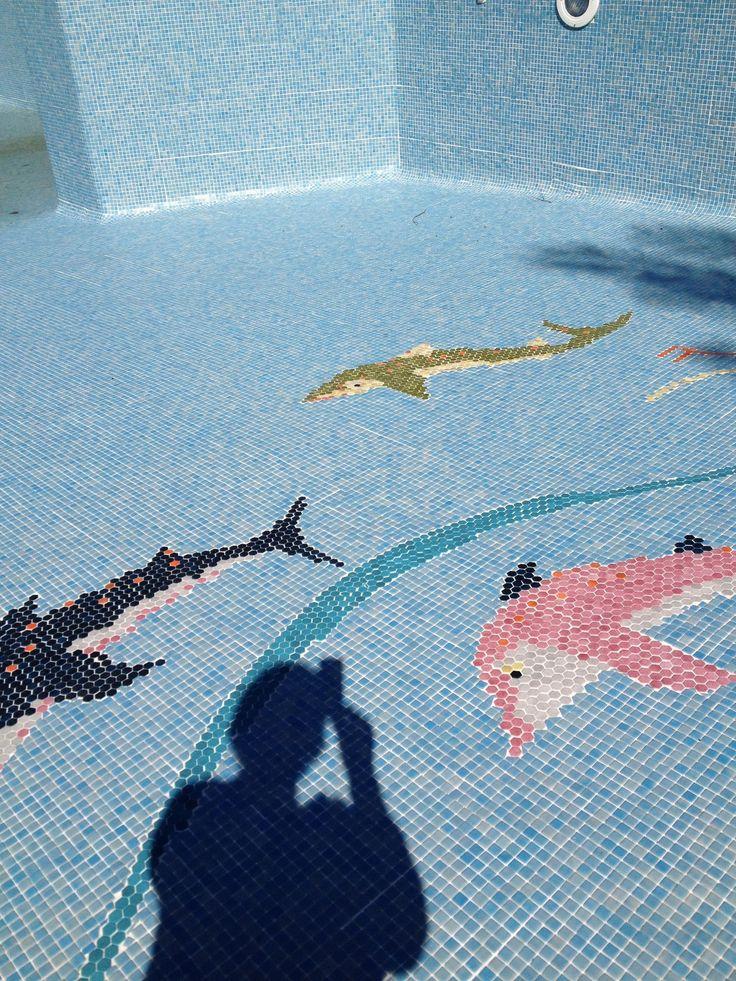 mosa que au fond de la piscine du campingpegomas
