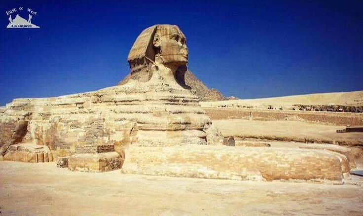 The king guarding his tomb 💂♀️أبو الهول  #easttowestadventures #travelblogger #travelphotography #travelphotographer #egypt #cairo #sphynx #museum #egypt #ancientegypt #hapshepsut #statue #wanderlust #explorethepast #mummies #pharoahs #giza #cairo #thenile #africa #kingdoms