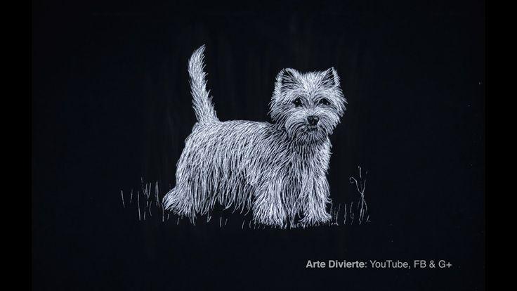 Cómo dibujar un West Highlinds White Terrier (Perro) - Narrado - YouTube
