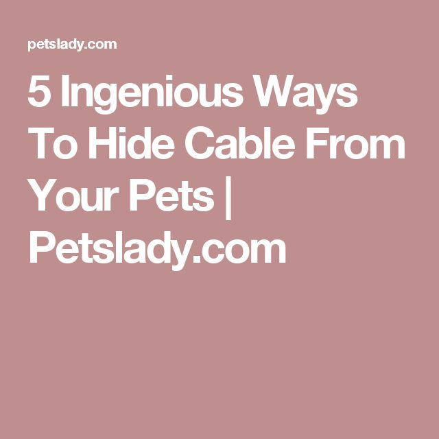 1000 ideas about hide cables on pinterest hide cable box cable box and cable management - How to mask cables ingenious solutions ...