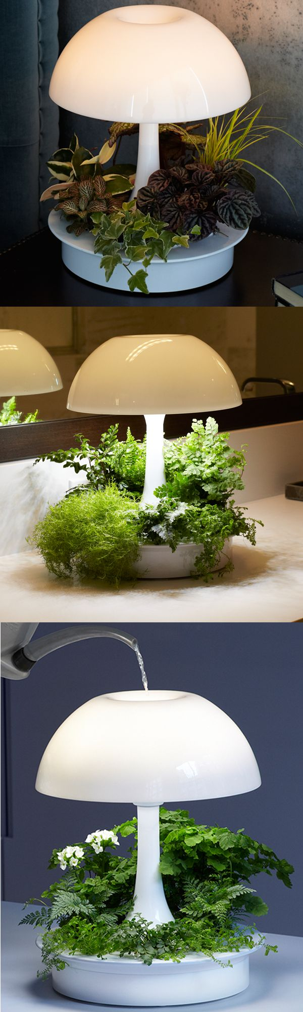 Best 25+ Grow lights ideas on Pinterest | Grow lights for ...