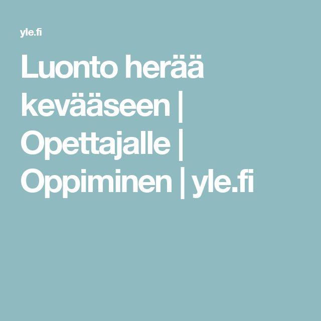 Luonto herää kevääseen | Opettajalle | Oppiminen | yle.fi