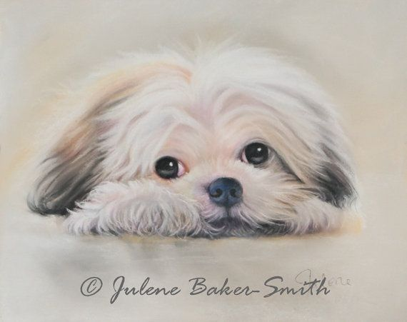 Cuteness You Can't Help But Love Me Shih Tzu Dog by ArtByJulene, $15.00
