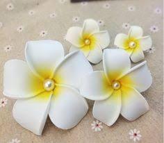 flores de eva passo a passo orquidea - Buscar con Google