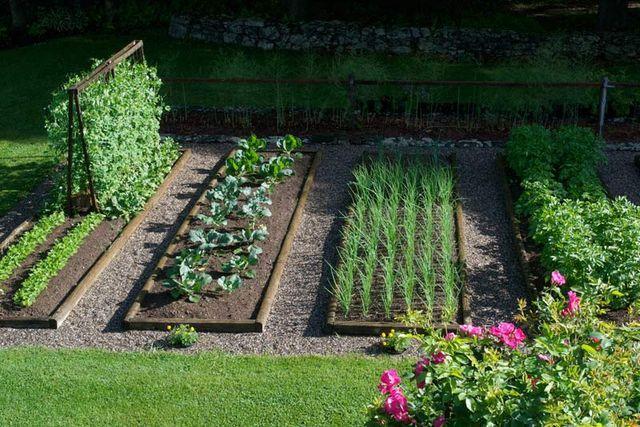 Green Relax e psicosi da orto: vita da giardino e da terrazzo