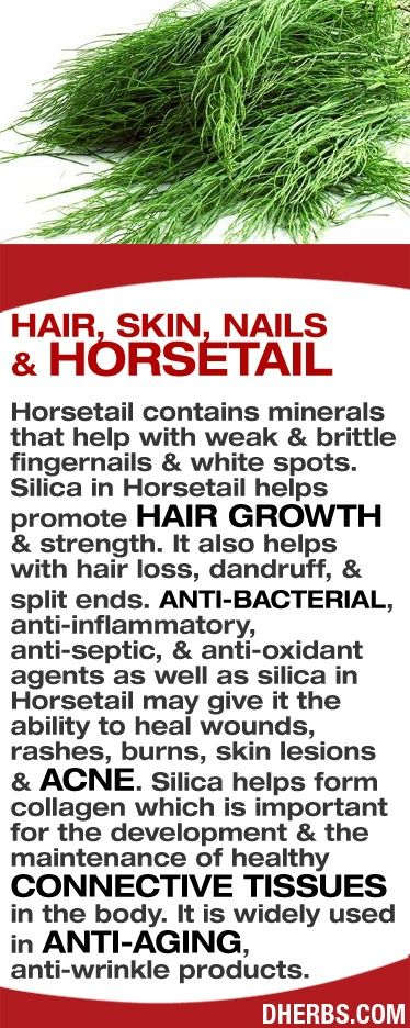 Horsetail contains minerals that help with weak & brittle fingernails. Silica in Horsetail helps hair growth & strength. Also helps with hair loss, dandruff & split ends. Anti-bacterial, anti-septic, & anti-oxidant agents as well as silica in Horsetail give it the ability to heal wounds, rashes, burns, skin lesions & acne. Silica helps form collagen, important in the development & maintenance of healthy connective tissues. It is used in anti-aging, anti-wrinkle products.