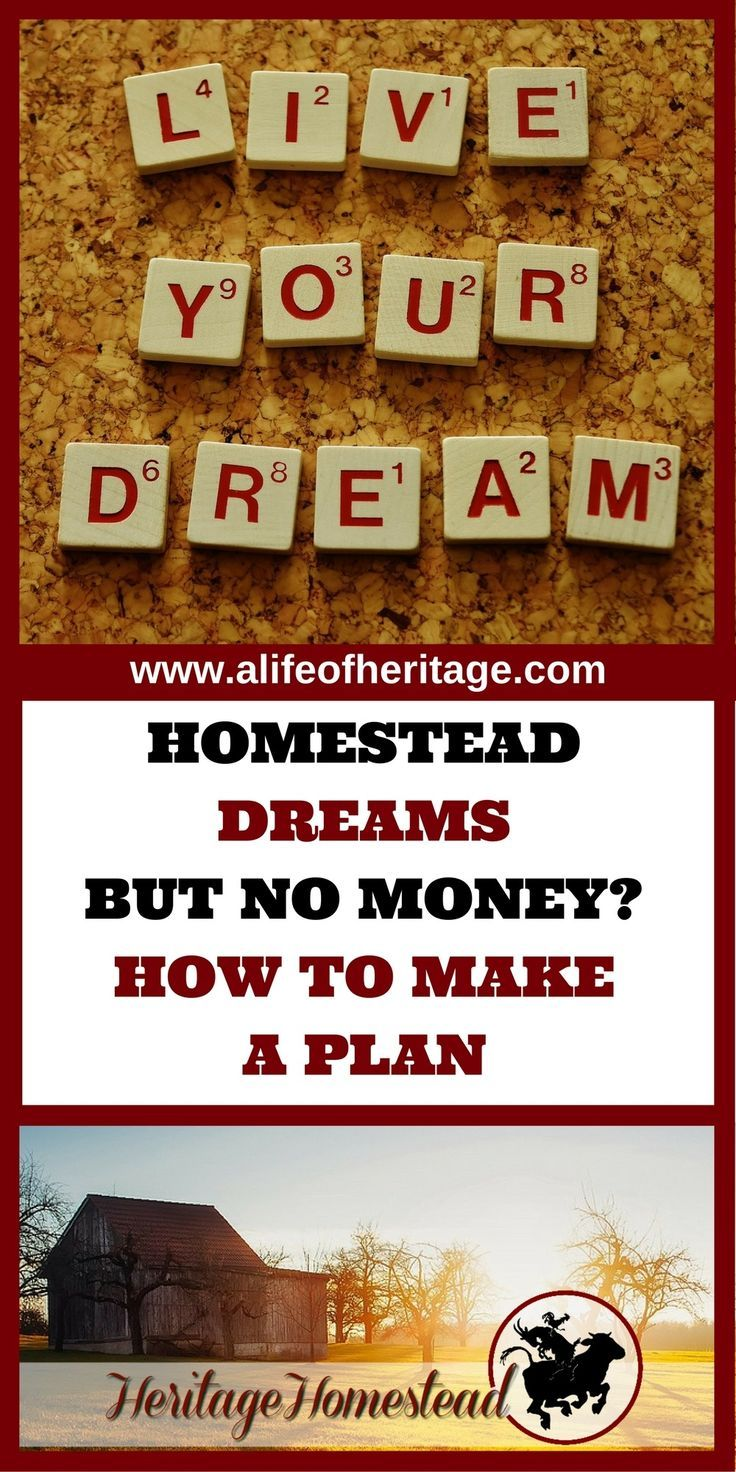 Homesteading   Money Making Homestead   Begin Homesteading   Starting to Homestead   Farm life   How to Homestead   7 tips to homesteading with no money. You can set out with this 7 step plan and each year get closer to your homesteading dreams. Just don't give up.