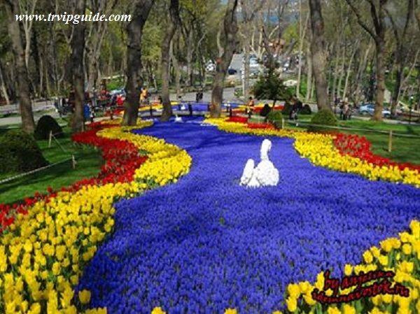 6 Апреля в 14:00 в парке Эмирган состоится открытие 9-го фестиваля тюльпанов. На протяжении фестиваля с 6 по 27 апреля с 11:00 по 20:00 в парке Эмирган, рядом с Белой виллой, будут выступать музыкальные группы, можно будет понаблюдать за жудожественным искусством Эбру, рисованием художников, а также выдуванием фигур из стекла. Услуги частных гидов в Стамбуле http://trvipguide.com/guide-in-istanbul