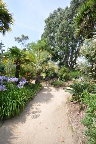 17 best images about pour le blog on pinterest leon herringbone and december wallpaper - Jardin exotique roscoff tourcoing ...