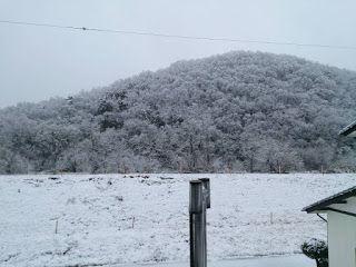 宮島工務店のスタッフブログ: 雪!