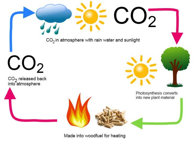 Ce este biomasa?