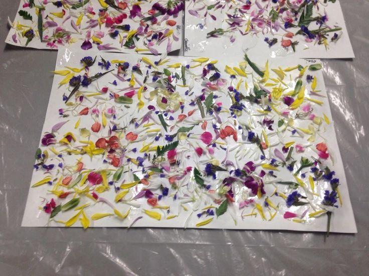Lentebloemenkunst www.activitheek.nl  Wat groeit en bloeit er allemaal om ons heen? Is het onkruid? Alle bloemen, planten, struiken, grassprieten, takken en noem maar op...wij zien het vandaag als kunst!