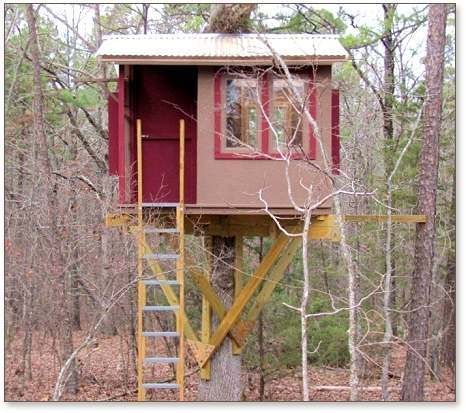 One tree house plans images galleries for Single tree treehouse ideas