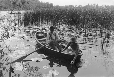Gathering Water-Lilies (1886) - Peter Henry Emerson