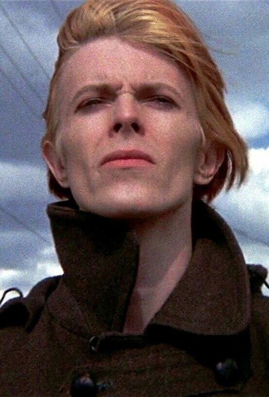 buddhist single men in bowie Find album reviews, stream songs, credits and award information for buddha of suburbia [single] - david bowie on allmusic - 1993.