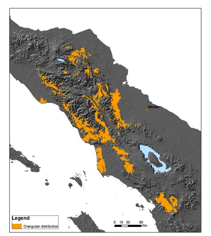 Sumatran Orangutan Distribution from 2012