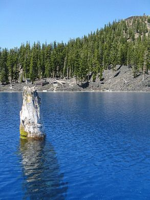 buddhist single men in crater lake Mount mazama's eruption nearly 7,700 years ago created crater lake and dumped three to five feet of pumice on the surrounding hills though the ground appears dry and dusty, the pine needle duff holds enough moisture to promote great fruitings.