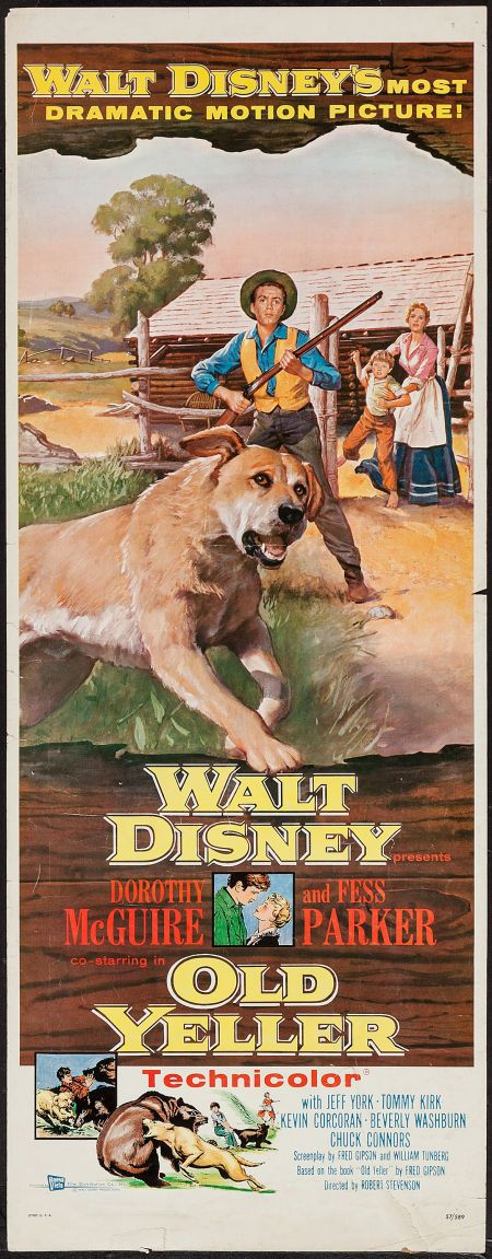 OLD YELLER (1957) - Presented by Walt Disney - Dorothy McGuire - Fess Parker - Jeff York - Tommy Kirk - Kevin Corcoran - Beverly Washburn - Chuck Connors - Based on book by Fred Gipson - Directed by Robert Stevenson - Buena Vista Film Distribution - Movie Poster.