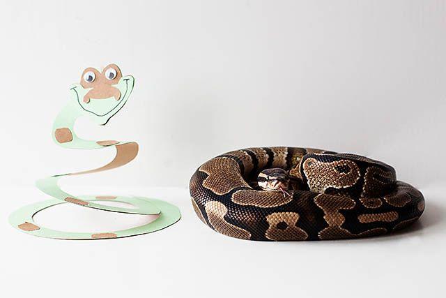 Disney's The Jungle Book snake craft