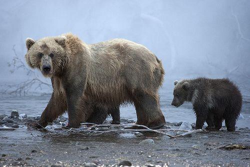 Russia, Kamchatka