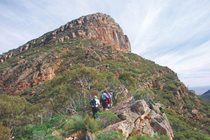 Hiking up St Marys Peak on the Heysen Trail in Australia