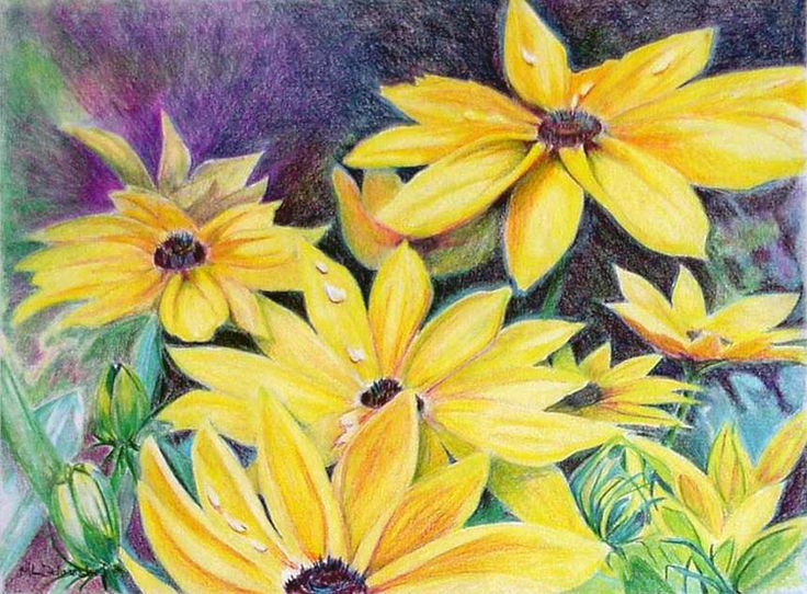 Mary Louise Delarosbel. Colour pencil. flowers