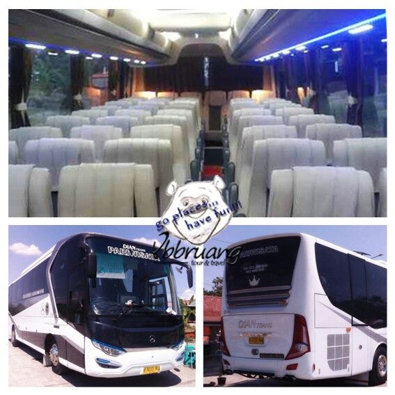 bus pariwisata dian trans bigbus