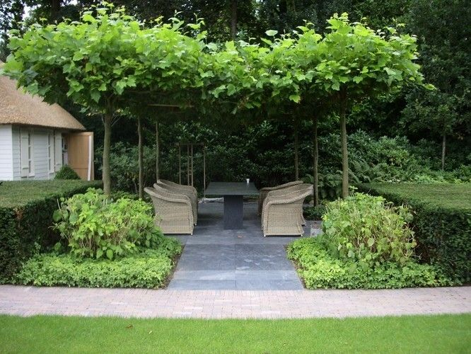 Shaded seating area with trees
