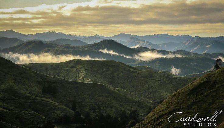 Paraparamu Highway, North of Wanganui