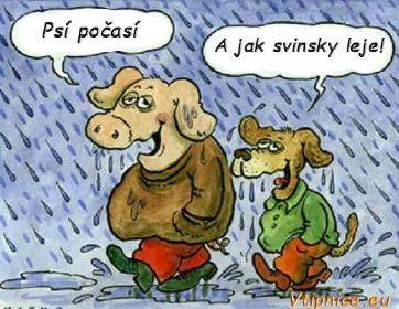 Vtipné obrázky s textem - psí počasí