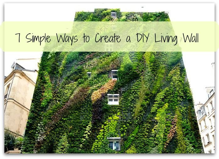 7 Simple Ways to Create a DIY Living Wall