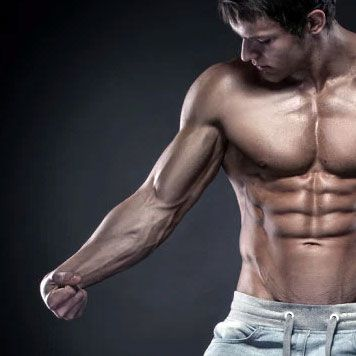 Polish off Your Arms with the Best Forearm Exercises for Men